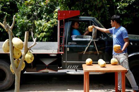 Josue Moreno, 19, gives a coconut to a customer at his street stall in La Fria, Venezuela, June 2, 2016. REUTERS/Carlos Garcia Rawlins