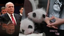 CIA, pandas, Manchester and more — it happened today: May 23 in pictures