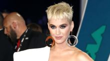 Katy Perry Helps a Fan Propose on National Coming Out Day