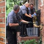 Postal worker finds huge boa wrapped around Kansas mailbox