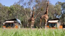 The best family-friendly hotels in New South Wales, from bush survival courses to private zoo tours