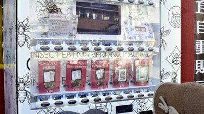 Insect snack machine's a hit in Japan