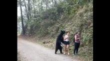 VIDÉO - Quand une randonneuse prend un selfie... avec un ours