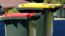The big yellow bin problem: Australia's 'toxic' recycling crisis exposed