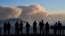 Reporting on the Australian fires: 'It has been heartbreaking'