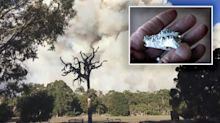 'Like a morgue': Report finds government burn did not go to plan