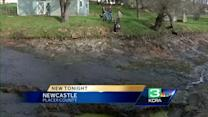 Newcastle couple wakes to find sinkhole in yard
