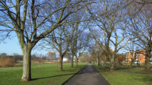 Boy, 15, 'raped woman in her forties at knifepoint in London park'