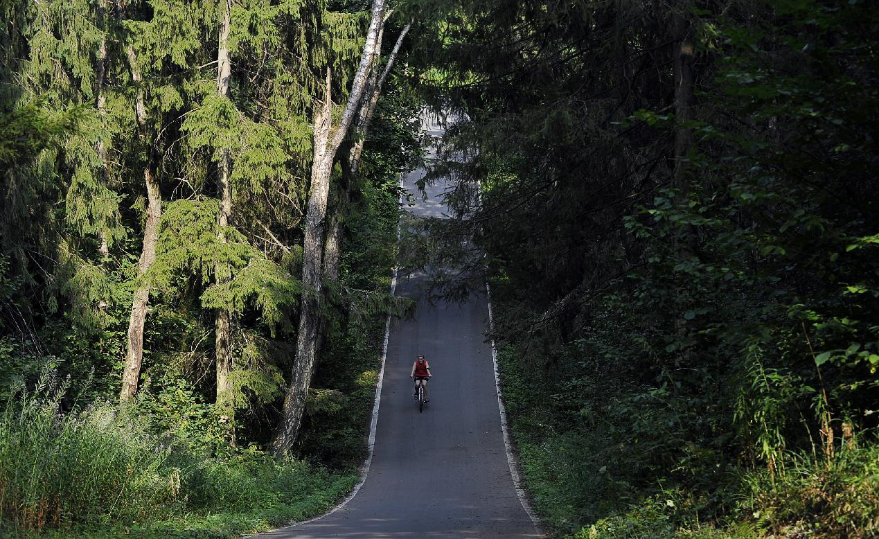 A cyclist rides a bicycle along a road in a park in Moscow on August 2, 2010