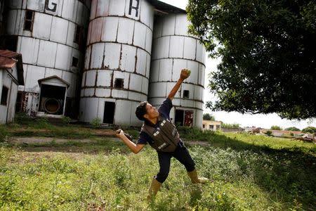 Josue Moreno, 14, throws a stick towards a mango tree as he tries to dislodge the fruits in La Fria, Venezuela, June 2, 2016. REUTERS/Carlos Garcia Rawlins