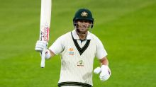 'Maximum?': David Warner brings up 50 in comical fashion