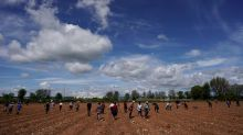 Spain to build camp for migrant strawberry pickers after U.N. criticism