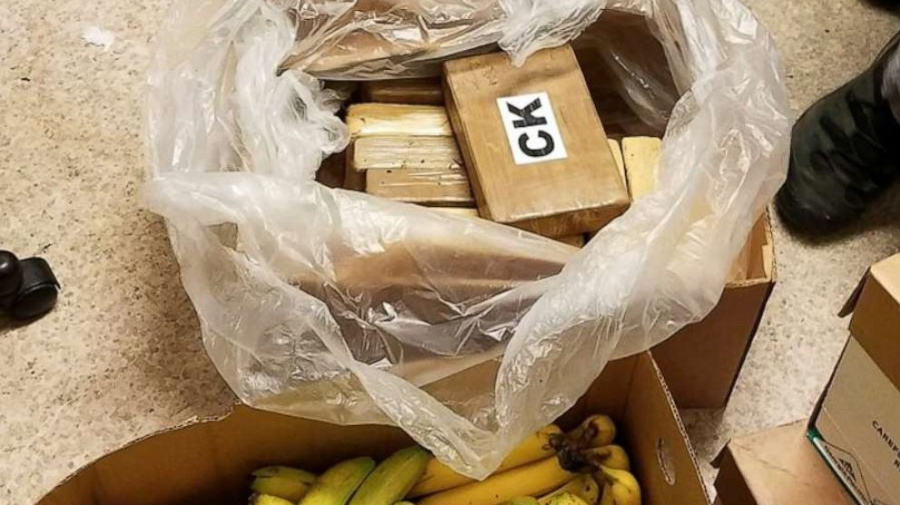 Stores find over $1M in cocaine in banana crates