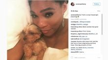 This Selfie of Serena Williams and Her Daughter Is the Cutest Thing You'll See All Day