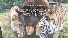 馬來西亞挪亞方舟 千隻動物的家