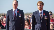 Prince Harry and Prince William's bond will 'never be the same'
