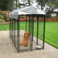 Great Deals on Dog Kennels