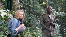 Humble in the jungle: Meeting the gorillas of war-torn Congo