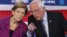 Warren explains the difference between herself and Sanders