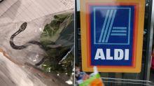 Aldi shopper stunned to find live SNAKE in bag of lettuce