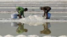 Mumbai's ecologically important salt pans may soon be opened up for real estate