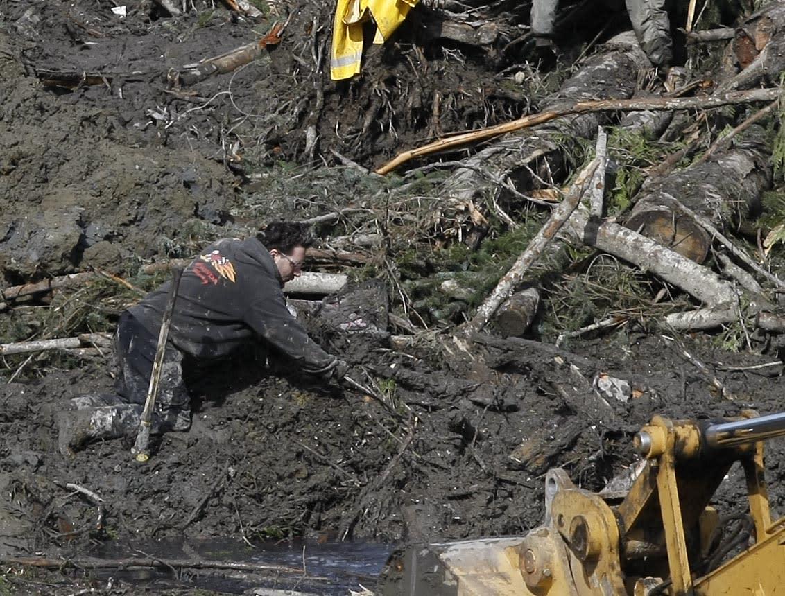 Un trabajador busca objetos en el lugar de un deslave mortal el 31 de marzo de 2014, en Oso, Washington. (Foto AP /The Herald, Sofia Jaramillo, Pool)