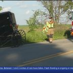 SUV Hits Amish Buggy In New Wilmington