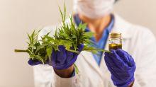Cannabis-Hammer: GW Pharma hebt ab – das steckt dahinter