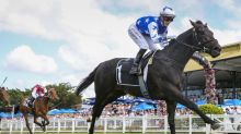 The Odyssey fit for Doomben return