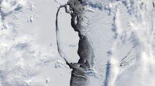 Forscher untersuchen Folgen des Abbruchs von Riesen-Eisberg