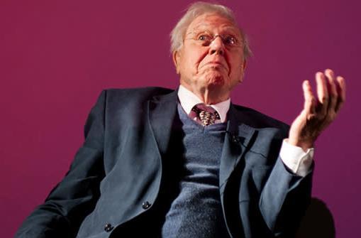David Attenborough's next documentary aims for Oculus Rift release