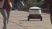 Rolling robots