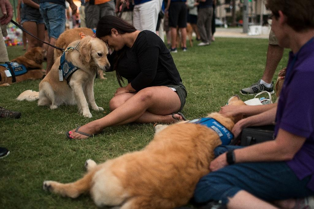Melissa Soto cuddles with a therapy dog near a memorial for the victims of the Pulse Nightclub shooting, at the Dr. Phillips Center for Performing Arts, June 14, 2016 in Orlando, Florida (AFP Photo/Drew Angerer)