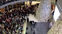 Man tosses $1,000 into mall crowd