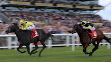 Horse Racing: Your horse-by-horse guide to the Geoffrey Freer Stakes at Newbury