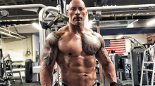 The Rock, 46, shocks fans with insane new physique