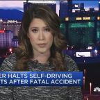 Uber halts self-driving tests after deadly accident