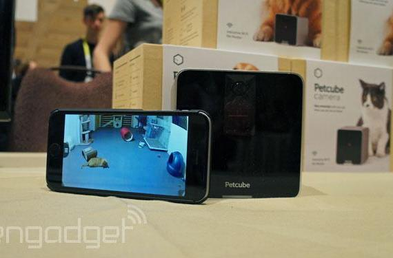 Petcube's WiFi camera lets you play with your pet, remotely