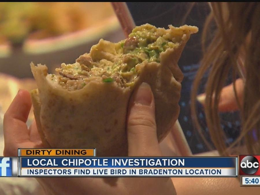 Dirty Dining Chipotle Mexican Grill