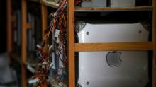 IT repairman seeks home for Apple collection, possibly world's largest
