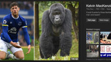 The UK's most popular newspaper suspended a columnist for calling a mixed race footballer 'a gorilla'