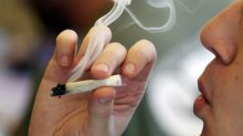 Pot use among college kids highest in 35 years, according to Univ. of Michigan study