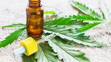 Better Cannabis Stock: CannTrust Holdings vs. Charlotte's Web Holdings