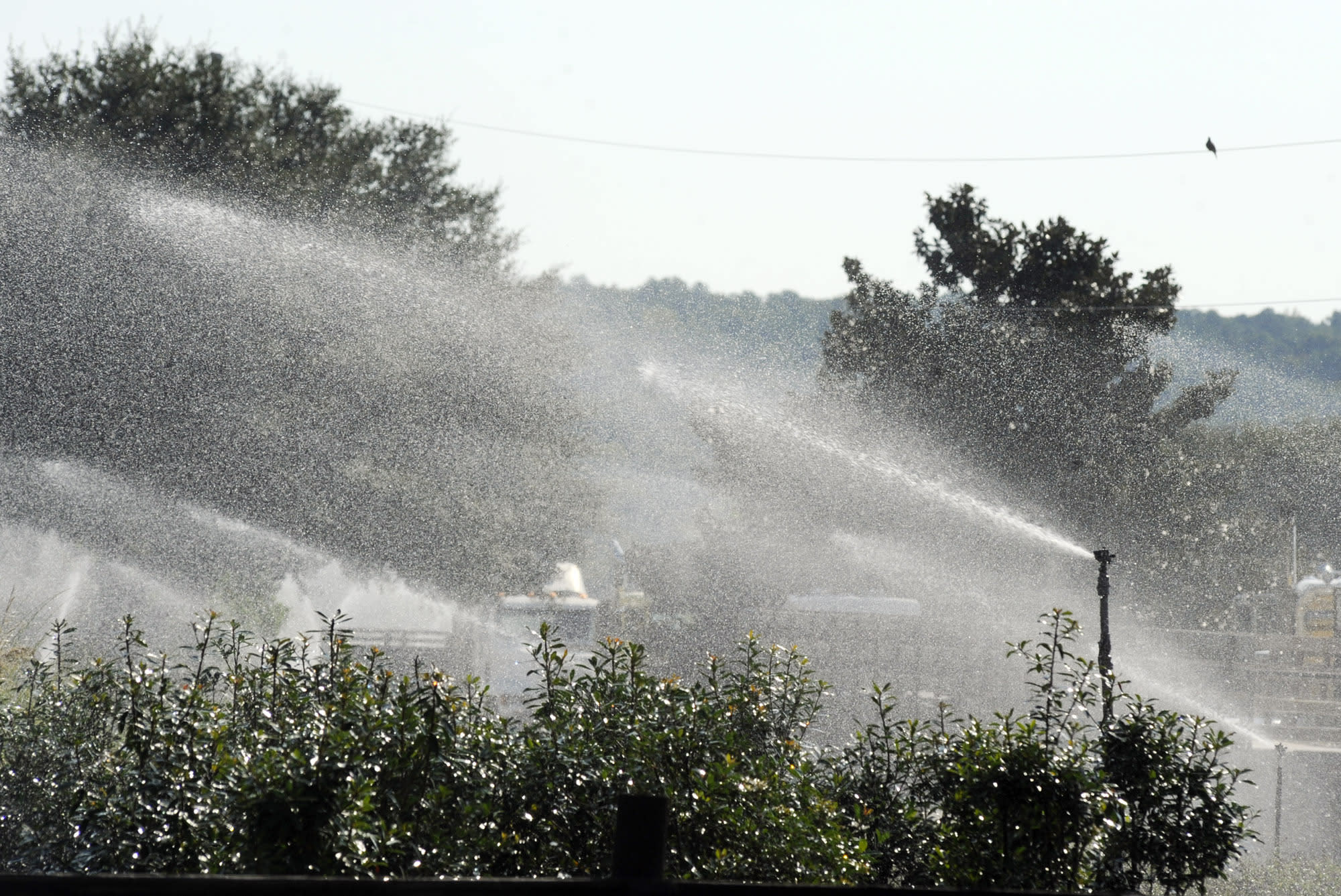 Sprinklers spray water on plants at Green Valley Farms, a commercial nursery in Montevallo, Ala., on Thursday, Sept. 26, 2019. Weeks of dry, hot weather across the Deep South have worsened a drought that a federal assessment says is affecting more than 11 million people across five states. (AP Photo/Jay Reeves)