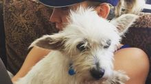 Kaley Cuoco Loses Another Beloved Pet Just One Week After Her First Dog's Death