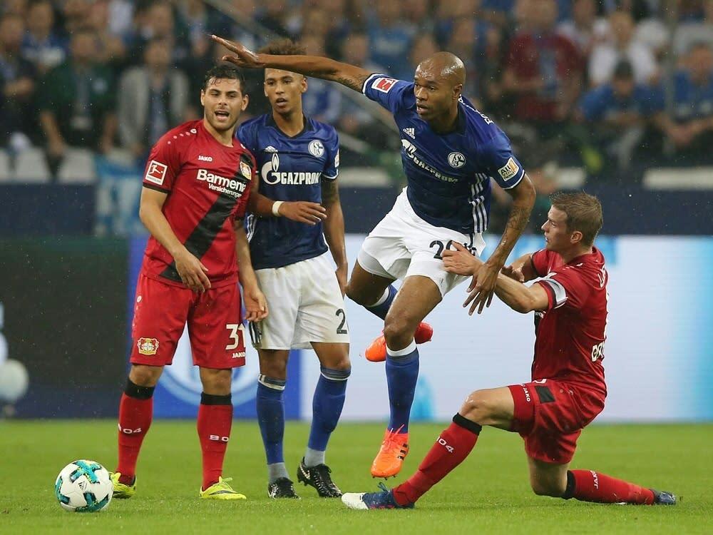 Schalke Gegen Leverkusen 2021