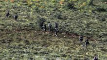 Seven security personnel dead as plane crashes in eastern Turkey