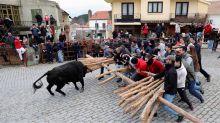 Los toros llegan a las redes sociales para atraer público joven en Portugal