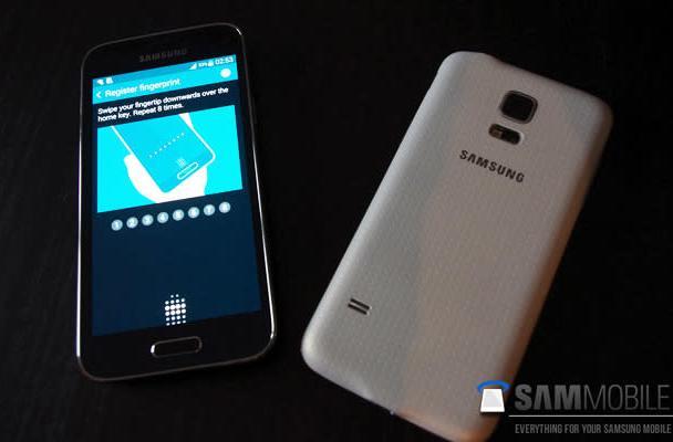 Leak hints the Galaxy S5 Mini will keep its bigger sibling's sensors