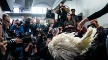 Ever Wondered Why We Pardon a Turkey Every Thanksgiving?